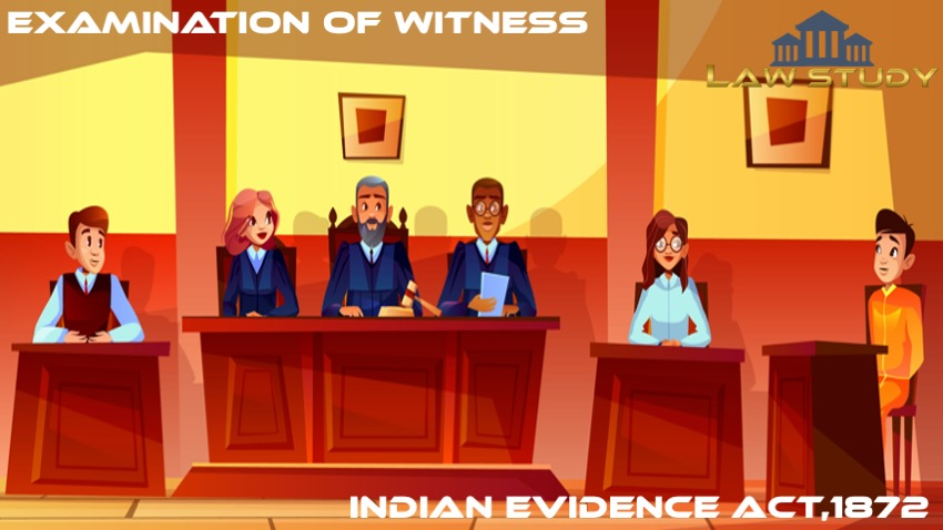 Read more about the article Examination of Witness as per the Indian Evidence Act,1872